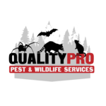 Yonkers Wildlife Removal